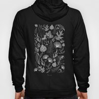 Study Of Growth Hoody