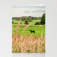 Black horse Stationery Cards