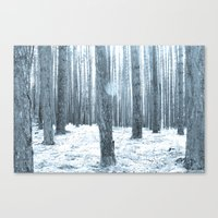 More Trees. Canvas Print