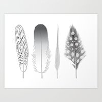 Feathers Trio Art Print