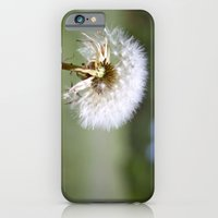 iPhone & iPod Case featuring Don't Blow Away by Maddie Weaver
