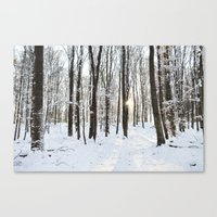 snowy woods Canvas Print