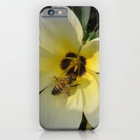 bee iPhone & iPod Cases featuring Bee by Lia Bernini