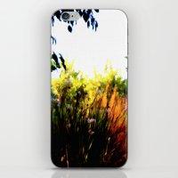 Backyard Hues iPhone & iPod Skin