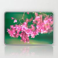 Pink Blossoms Laptop & iPad Skin
