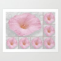 Beautiful Flower Collage Art Print