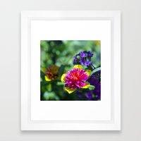 The Colors of Spring Framed Art Print