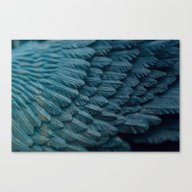 Ombre Wings Canvas Print