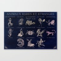 Strange and seldom animals Canvas Print