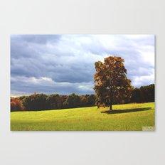 Field of Dreams Canvas Print