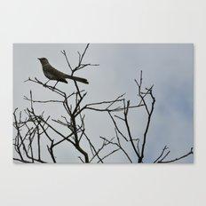 Nestling Canvas Print