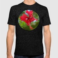 Scarlet Flower Mens Fitted Tee Tri-Black SMALL