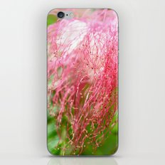 Pink Costa Rican Flower iPhone & iPod Skin