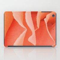 Painted Rose Petal II iPad Case