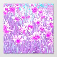 Narcissus Flowers Abstra… Canvas Print