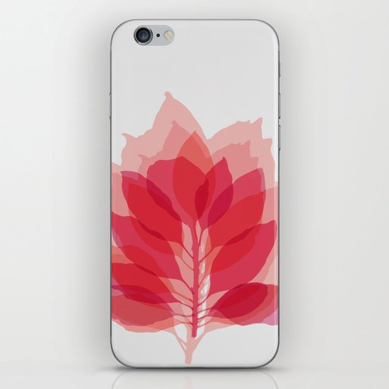 Blossom Rose iPhone & iPod Skin