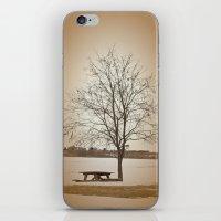 Winter Silence iPhone & iPod Skin