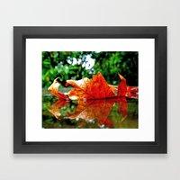Fallen Leaf Framed Art Print