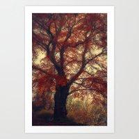 Copper Beech Art Print