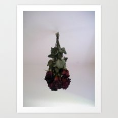 Hanging Roses Art Print