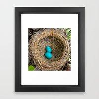 Two Little Robin's Eggs Framed Art Print