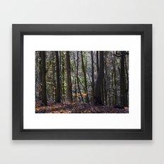 LEAFY WOODLAND Framed Art Print
