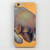 Pup iPhone & iPod Skin