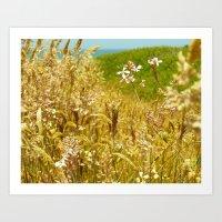 Fort Brag Seaglass Beach… Art Print