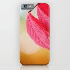 Autumn Glow iPhone 6 Slim Case
