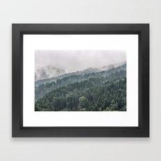 FOREST IN THE FOG 2 Framed Art Print