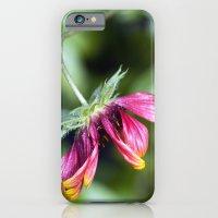 Stooped iPhone 6 Slim Case