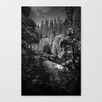 Minnesota North Shore #6 Canvas Print