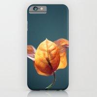 Wait Here iPhone 6 Slim Case