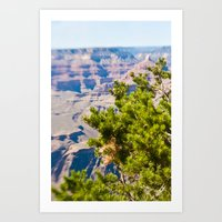 Grand Canyon 5 Art Print