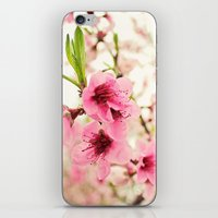 Spring Is In The Air! iPhone & iPod Skin