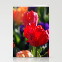 Tulips 3 Stationery Cards