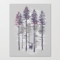 The trance of a deer Canvas Print