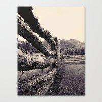 Colorado, Fence, B&w Canvas Print