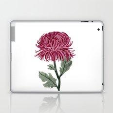 Pink Chrysanthemum Laptop & iPad Skin