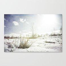{ GRASSY PERSPECTIVE } Canvas Print
