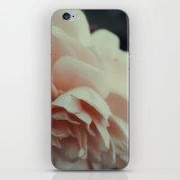 Wildeve Rose No. 2 iPhone & iPod Skin