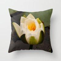 White Lily Bud Throw Pillow