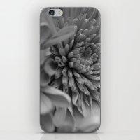 Blooming B&W iPhone & iPod Skin