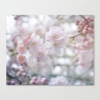 Blossoming Blossoms Canvas Print
