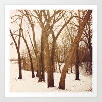 Resting Trees Art Print