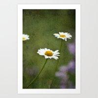 Daisy Chain 2 Art Print