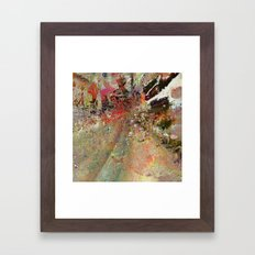 V2R47 Framed Art Print