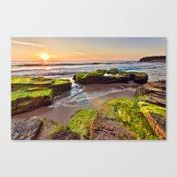 a Mossy Sunrise  Canvas Print