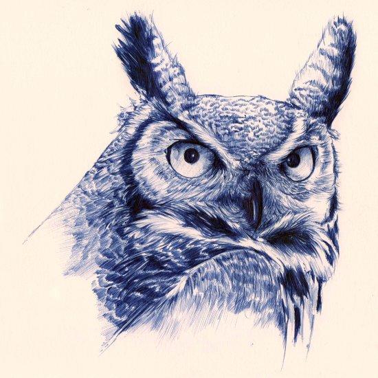 Ballpoint Pen Owl Art Print
