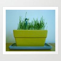 Duck in Wheat grass Art Print